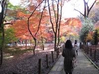 H091123_josai_rekishi_tour_009