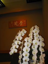 2011015_yuinou_023