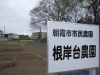 20110407_sakura_002