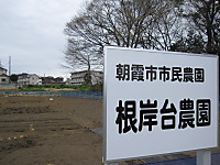 20110407_sakura_002_2