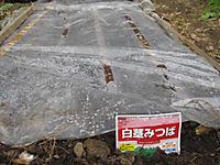 20111030_nouen_003