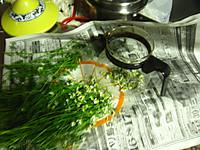 20120527_kamomeal_tea_001