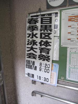 20120602_toretate_yasai_pasata_001