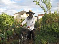 20120815_szk_farm_001