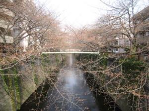 20130318_hukutoshin_line_002