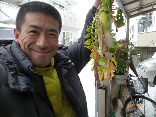 20140215szk_nouen_yuki_daikon_004