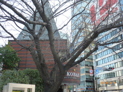 20140319sukiyabashi_sakura_001_2