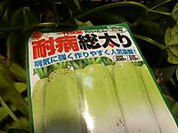 20150711_daikon